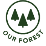 Our Forest