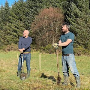 Subscribe to reforest Ireland